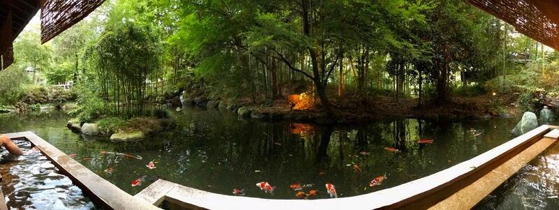 足湯からの景色